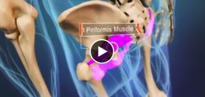 piriformis-muscle1